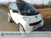 eladomerci-smart-fortwo-06-pulse-softip-2